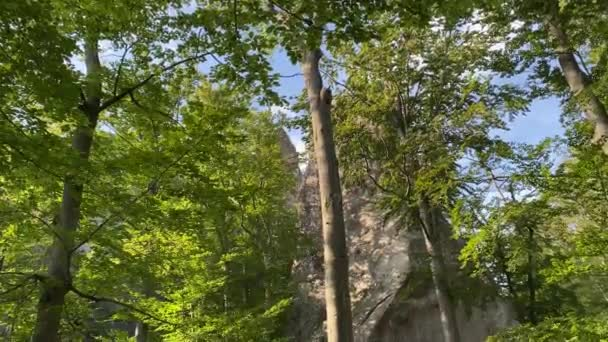 Dovbush Rocks in Bubnyshche at sunny day- fantastic boulders amidst beautiful scenic Carpathian forests and mountains, Ukraine.