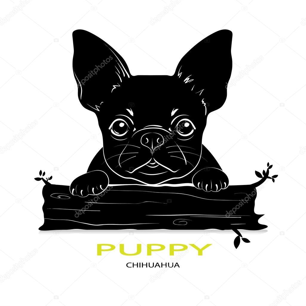 Raza de perro cachorro Chihuahua — Vector de stock © erom #92157882