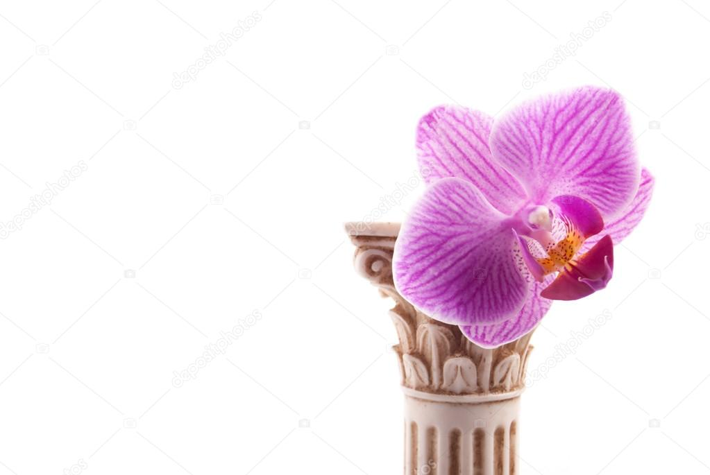 Classical column with flower