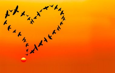 Heart shape made by flying birds in the sunset sky, in vintage tone.