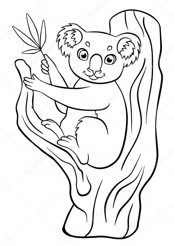 Imágenes: eucaliptos para colorear | Poco lindo koala se encuentra ...
