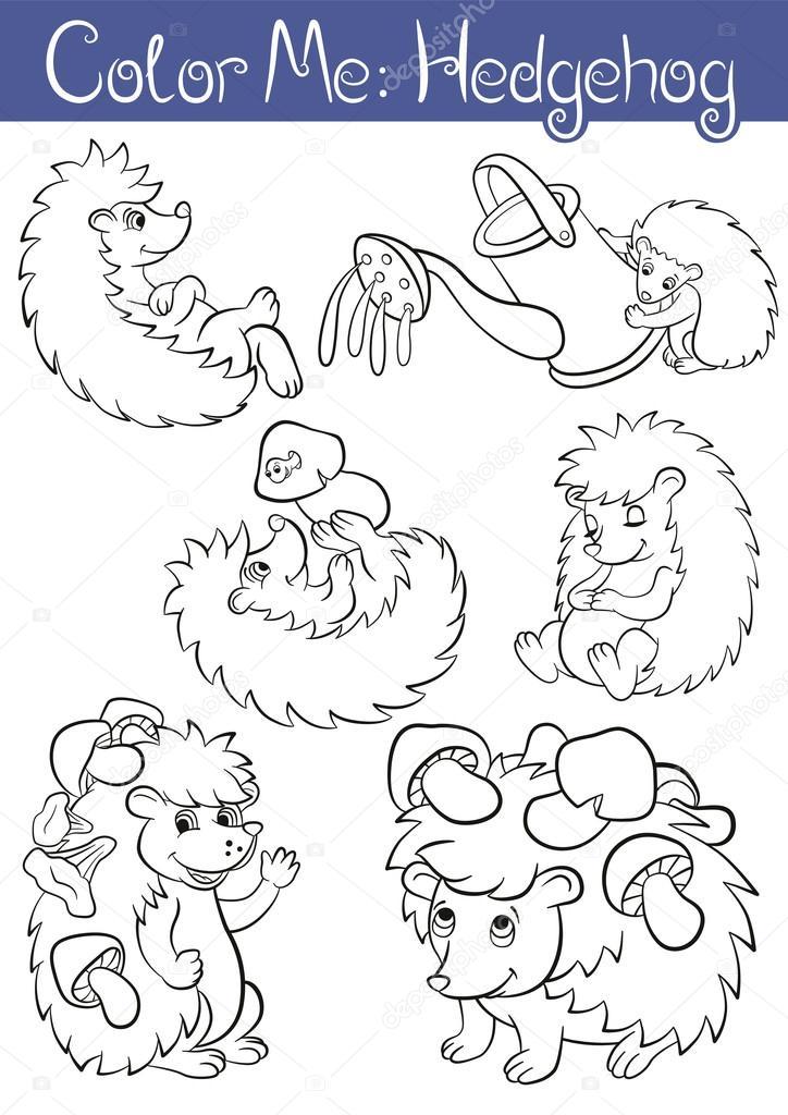 Set of seven little cute hedehoges.