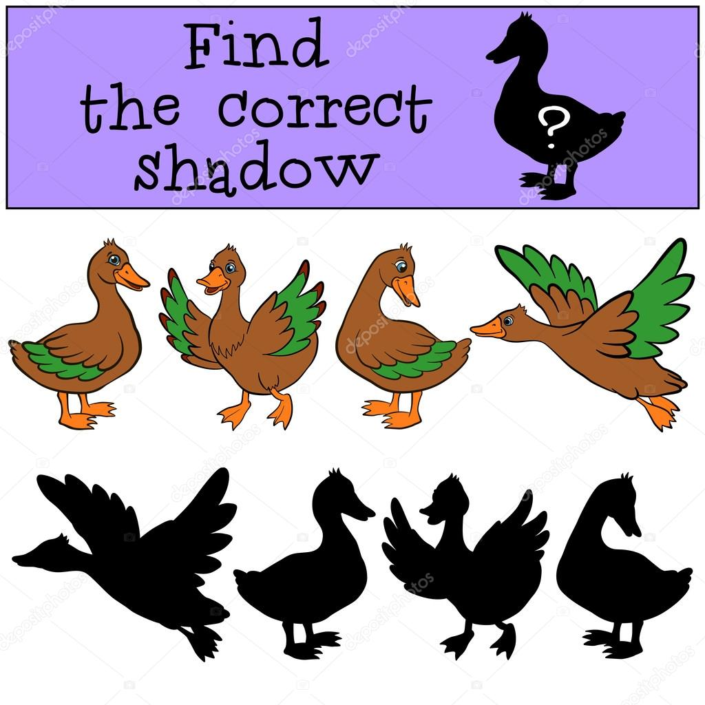 Find the correct shadow. Ducks.