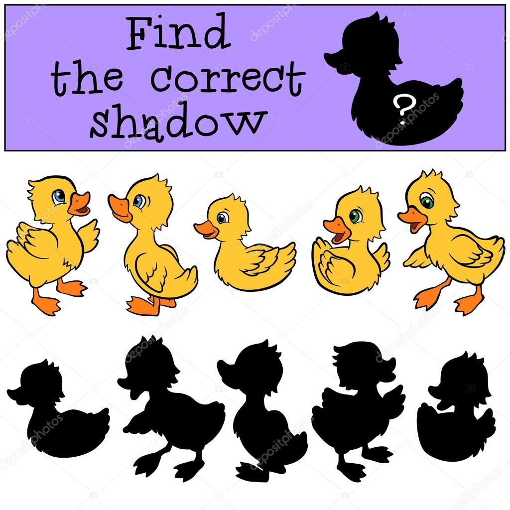 Find the correct shadow. Little cute ducklings.
