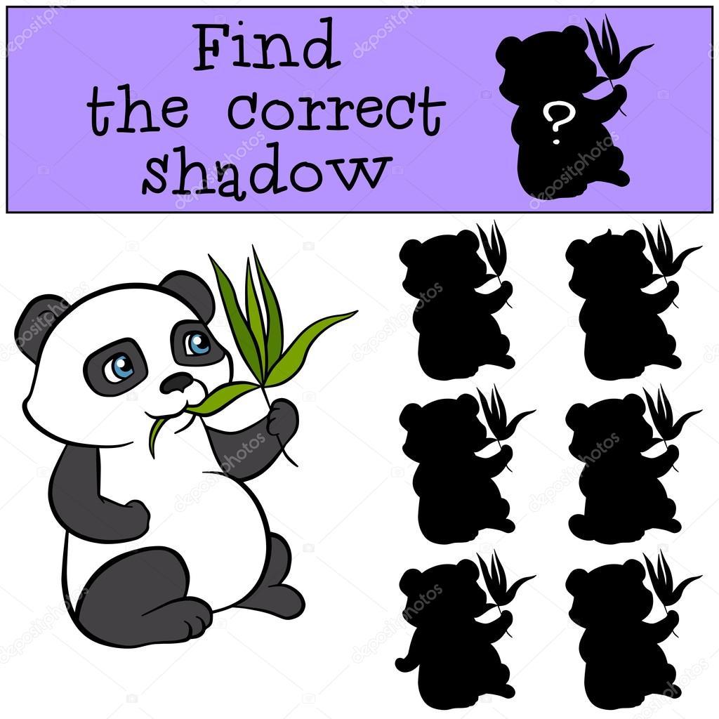 Little cute panda sits and eats leaves.
