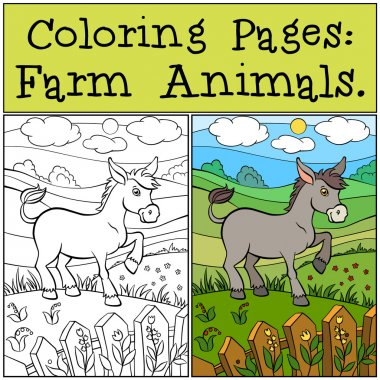 Coloring Pages: Farm Animals. Little cute donkey stands on the g