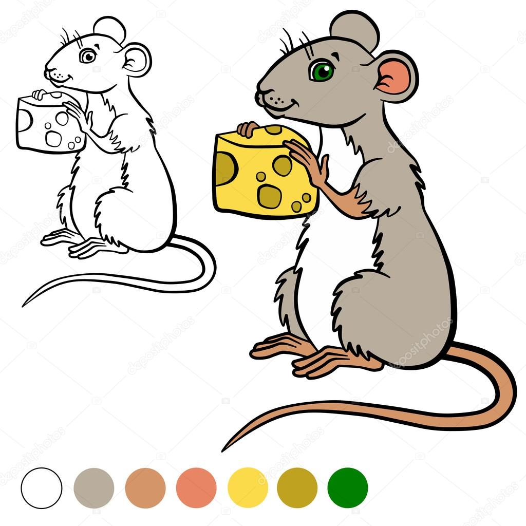 coloring page color me mouse little cute mouse holds a cheese in the hands vector by ya mayka