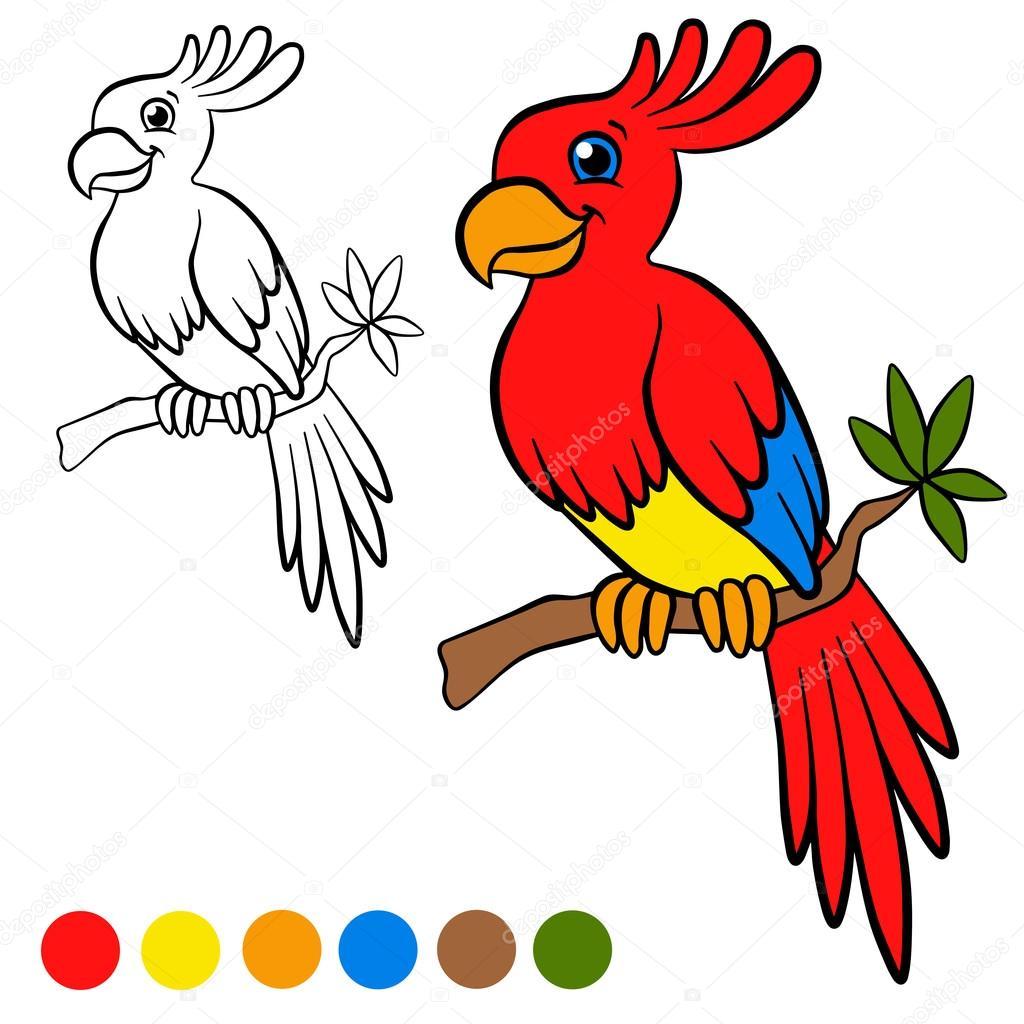 Coloring page. Color me: parront. Little cute parrot sits on the ...