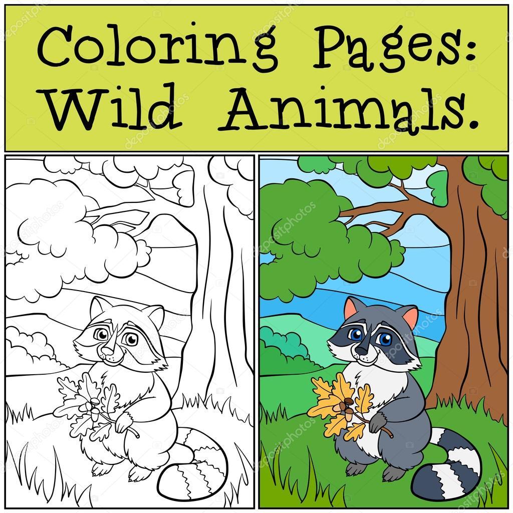 Malvorlagen: Wilde Tiere. Kleine süße raccons — Stockvektor © ya ...