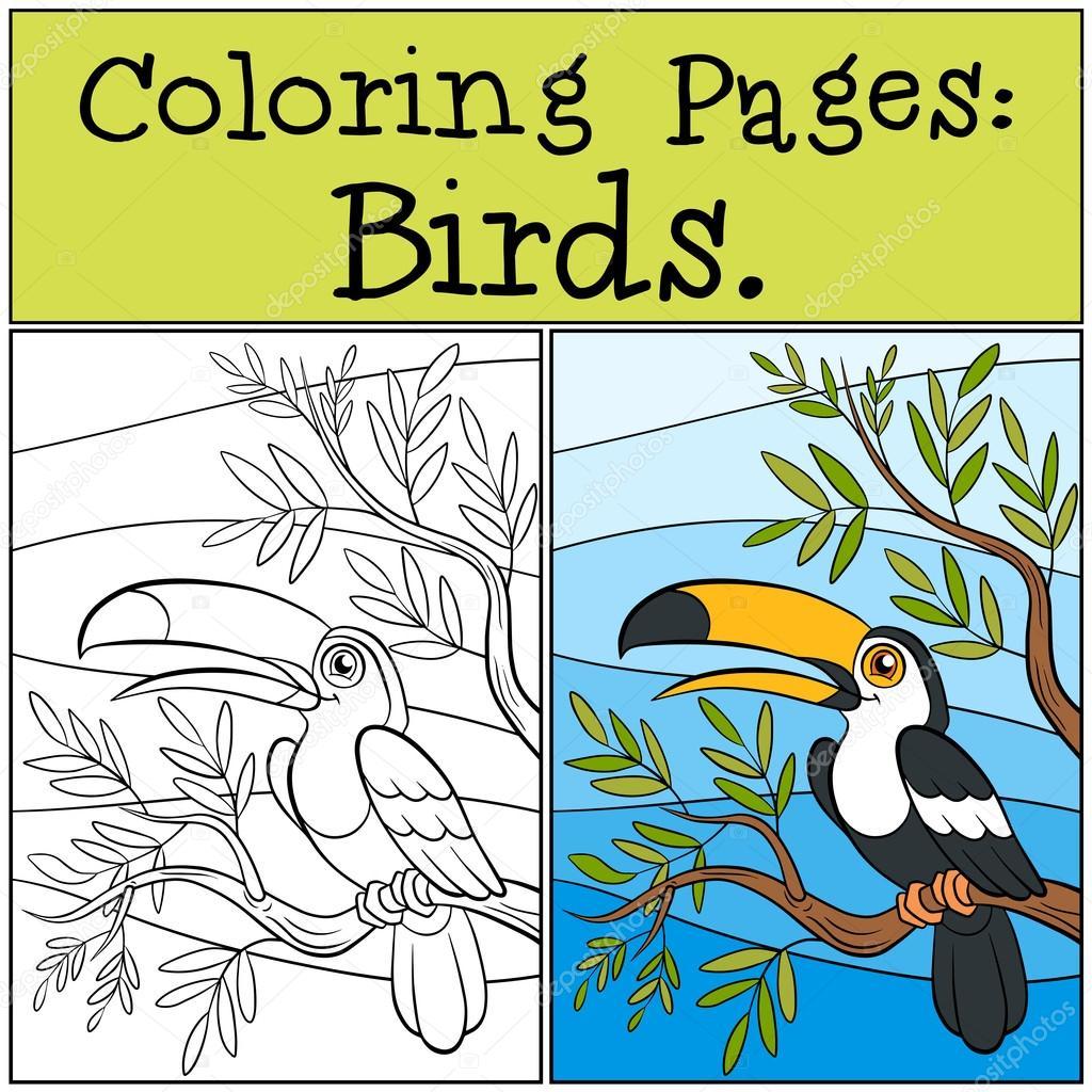 Páginas para colorear: aves. Pequeño tucán lindo — Archivo Imágenes ...