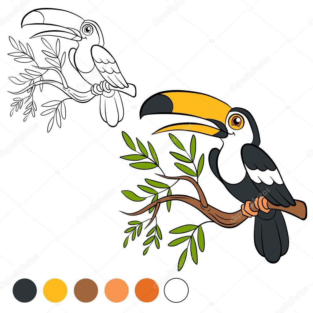 Malseite. Farbe mich: Tukan — Stockvektor © ya-mayka #109367116