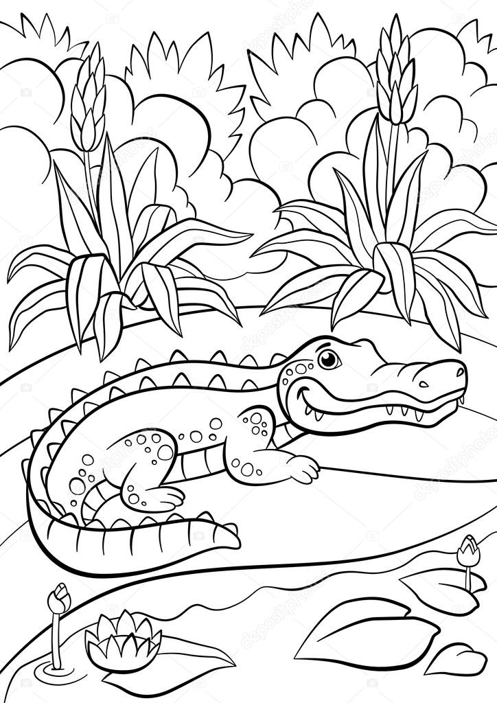 páginas para colorir animais jacaré de giro pequeno senta se perto