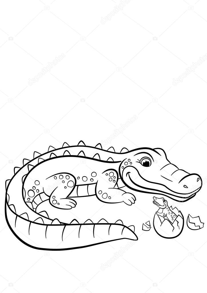 nuevo dibujos para colorear de animales oviparos nuevo
