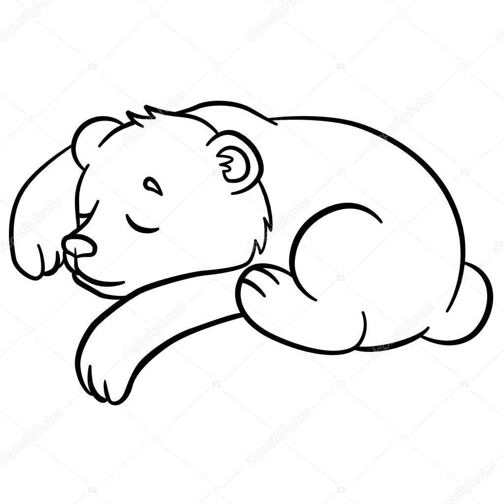 Malvorlagen Wilde Tiere Kleine Niedliche Baby Bär Schläft