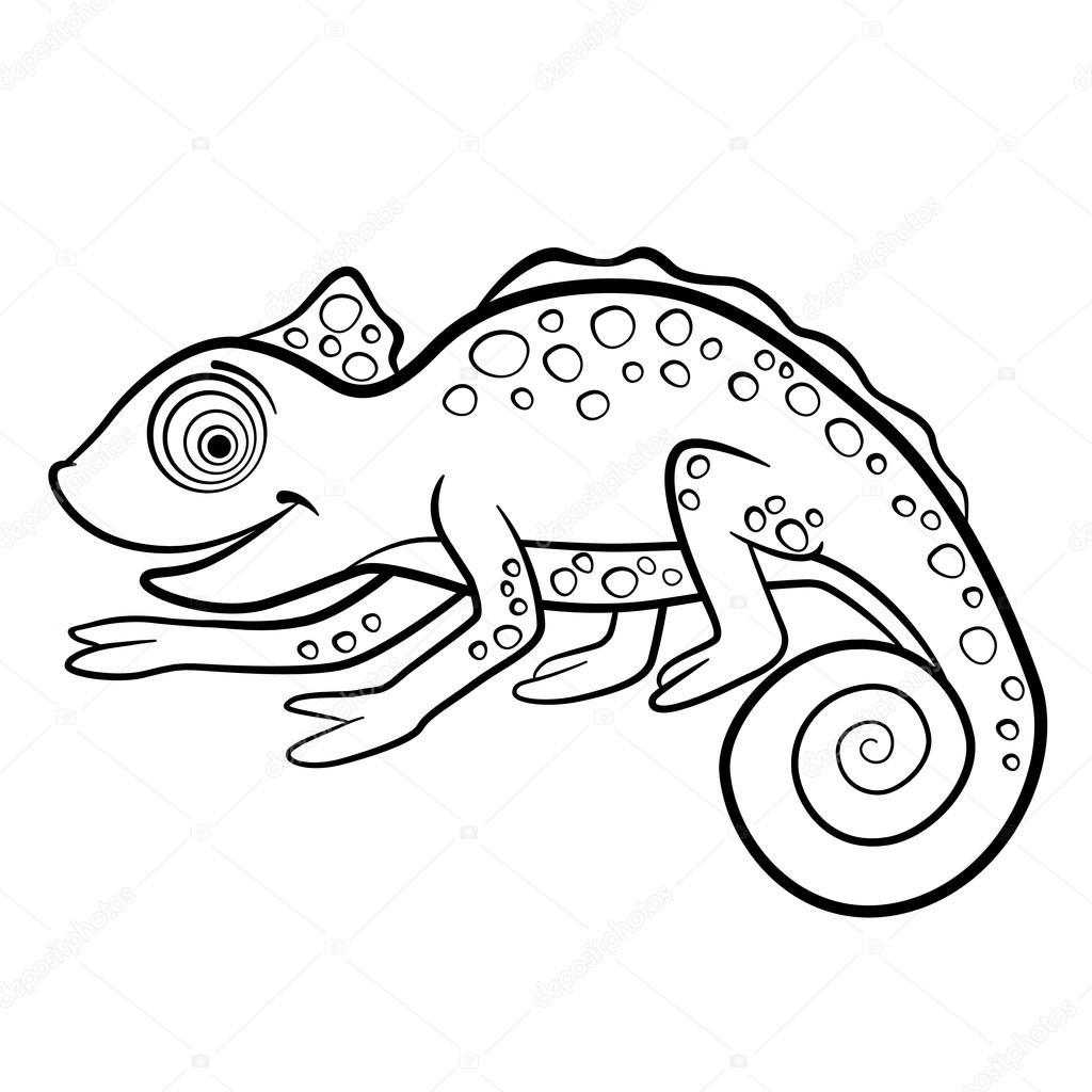 Dibujos Para Colorear. Animales Salvajes. Poco Camaleón