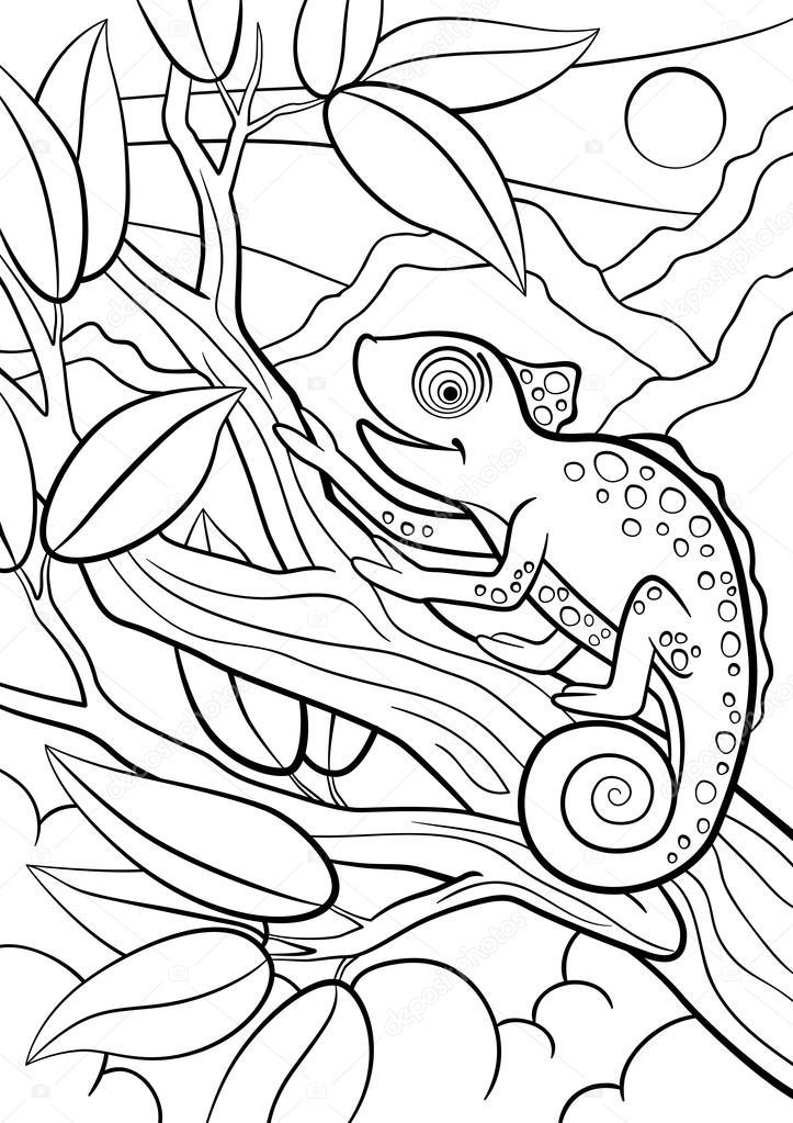 Malvorlagen. Wilde Tiere. Kleine niedliche Chamäleon sitzt auf der ...