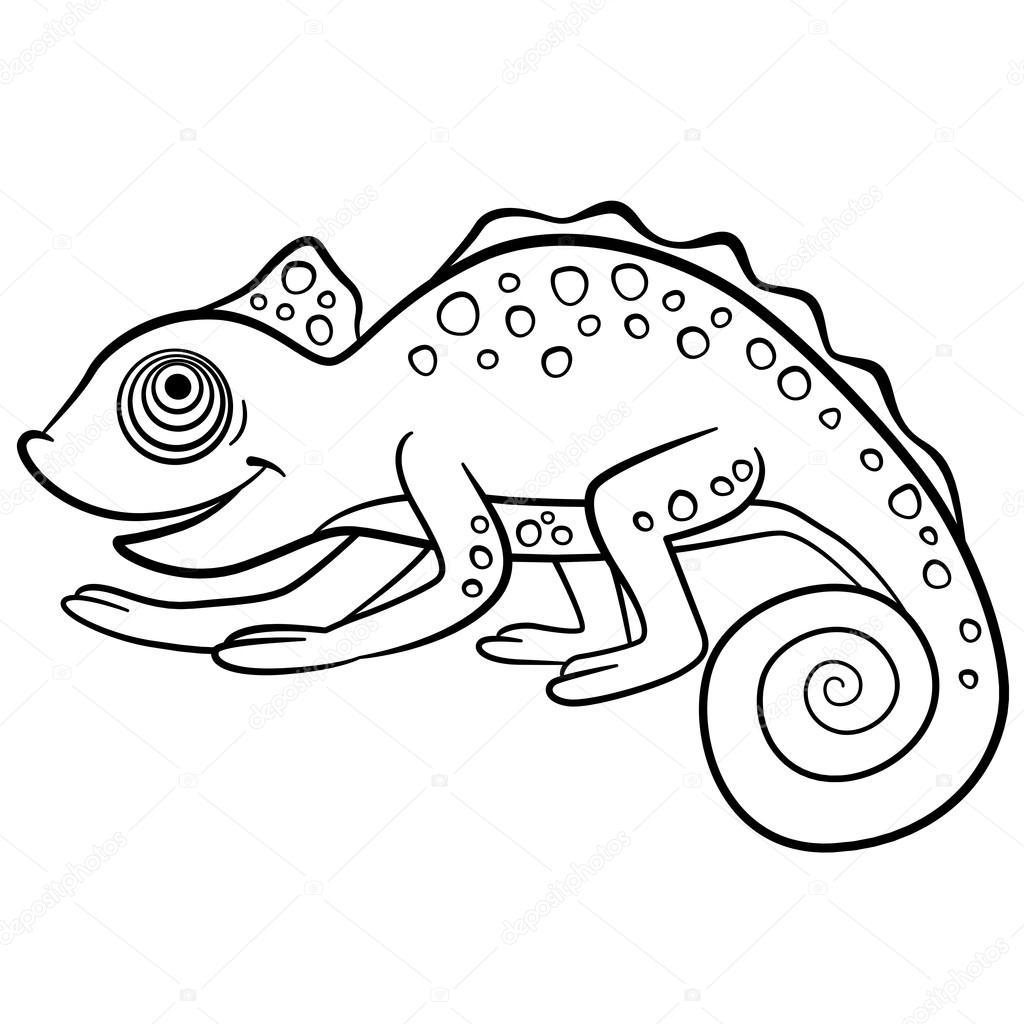 Kleurplaten Wilde Dieren Kleine Schattige Kameleon Stockvector