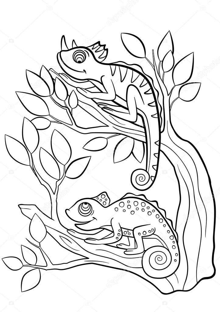 Malvorlagen. Wilde Tiere. Zwei kleine süße Chamäleon — Stockvektor ...