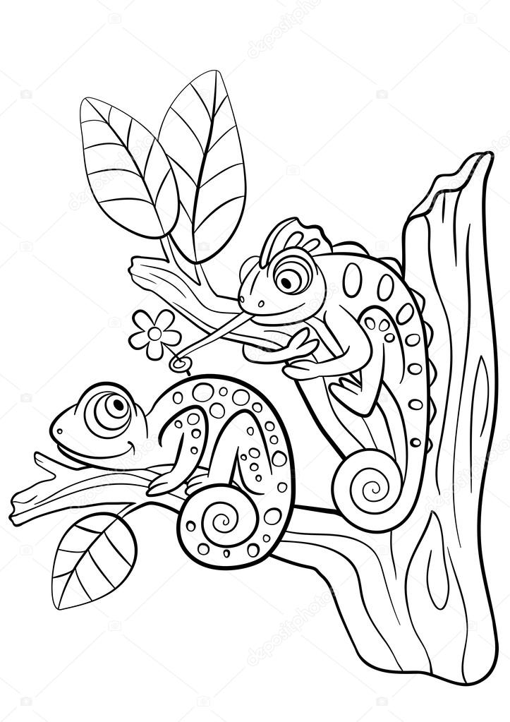 kleurplaten wilde dieren twee kleine schattige kameleon