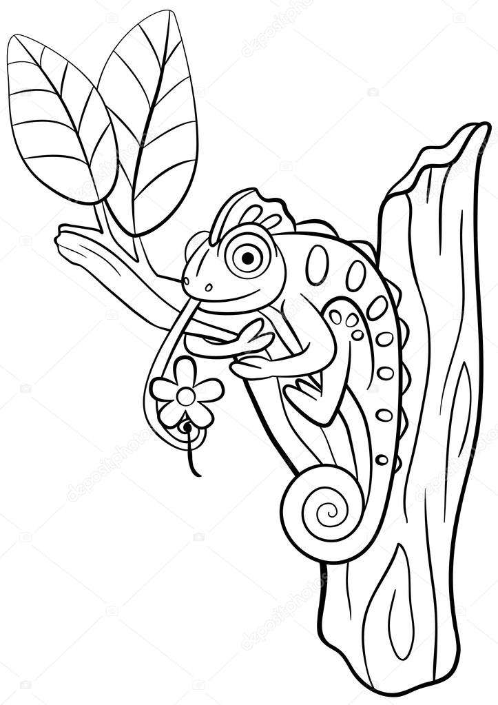 Kleine Kleurplaten Van Dieren.Kleurplaten Wilde Dieren Kleine Schattige Kameleon Zit Op