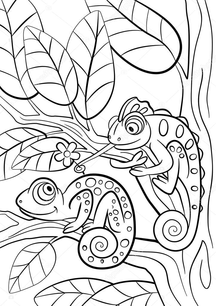 Kleurplaten Kleine Dieren.Kleurplaten Wilde Dieren Twee Kleine Schattige Kameleon
