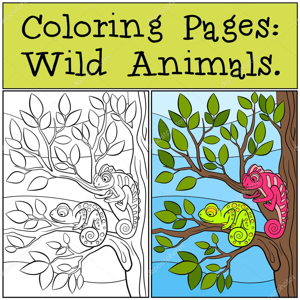 Coloring Pages: Wild Animals. Two little cute chameleons ...