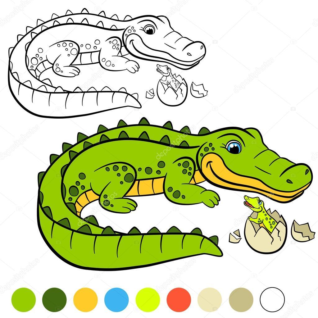 Coloring page. Color me: alligator. Mother alligator with her li ...