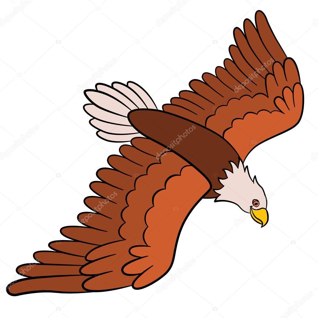 Wonderful Cartoon Birds For Kids: Eagle. Cute Bald Eagle Flies And Smiles. U2014 Vector  By Ya Mayka