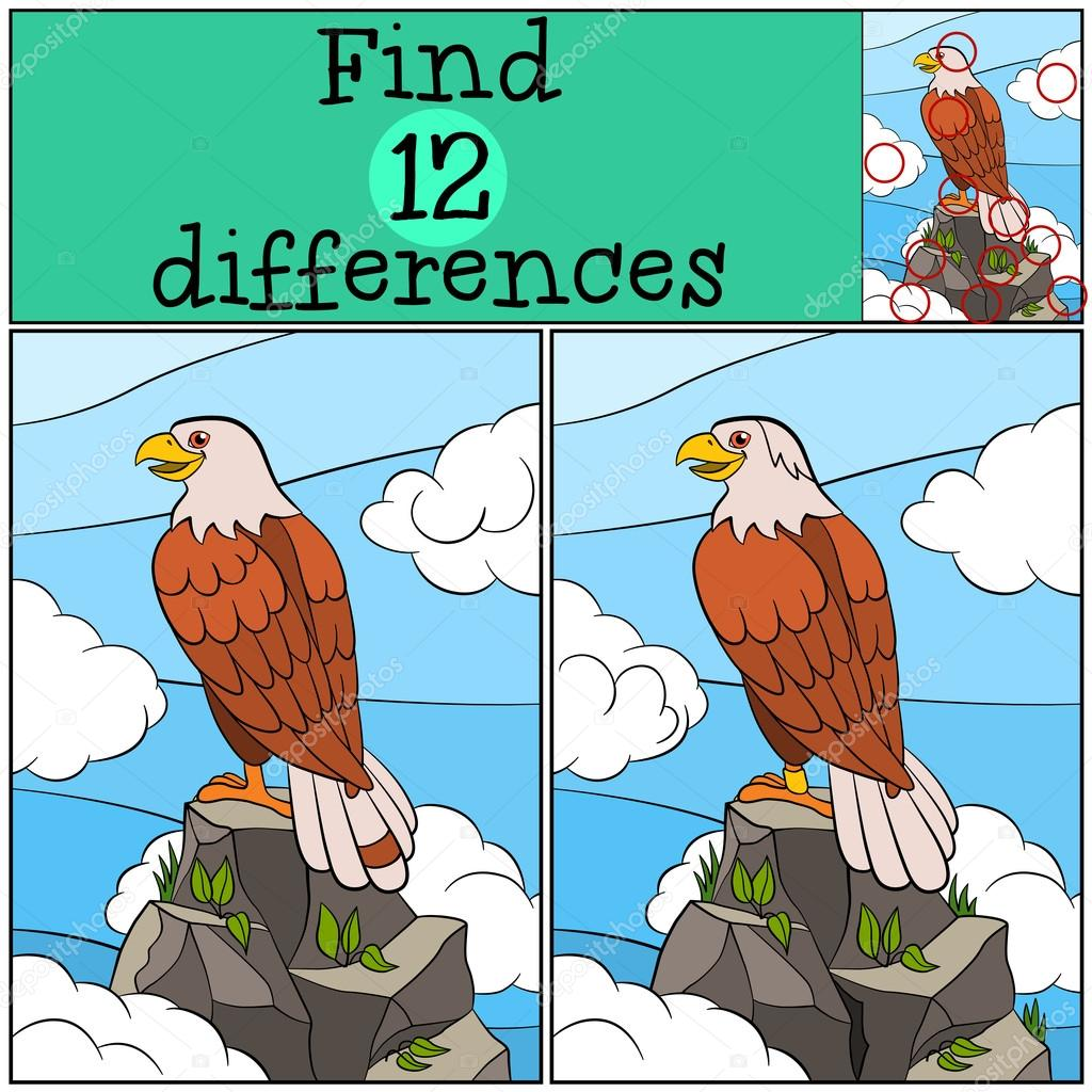 Children games: Find differences. Cute bald eagle sits on the ro ...