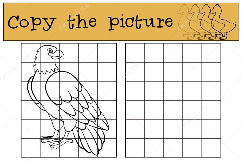 Juegos infantiles: copiar la imagen. Águila calva lindas sonrisas ...