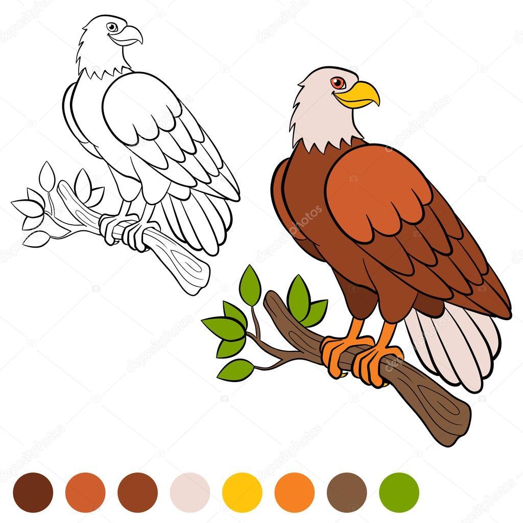 Página para colorear. Color me: águila. Linda águila se sienta y ...