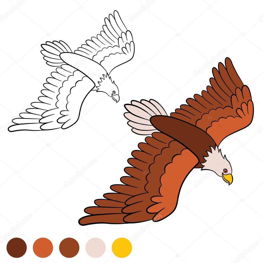 Página para colorear. Color me: águila. Lindo el águila calva ...