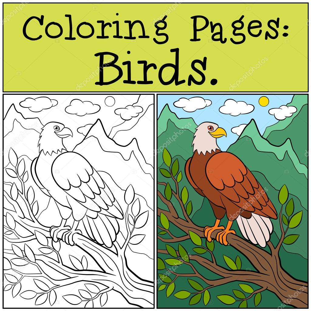 Coloring Pages: Wild Birds. Cute bold eagle sits and smiles. — Stock ...