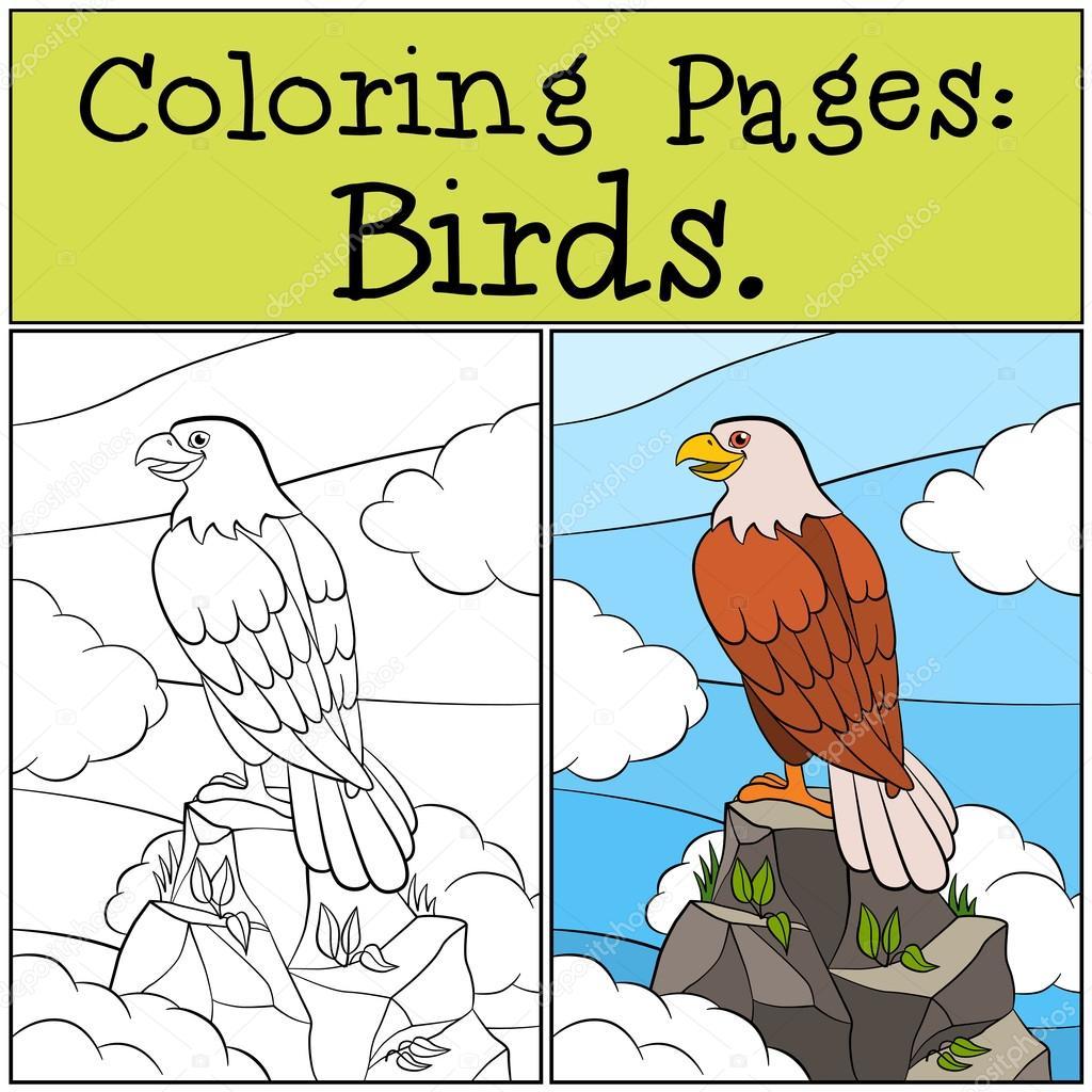 Dibujos para colorear: Aves silvestres. Águila audaz lindo se ...