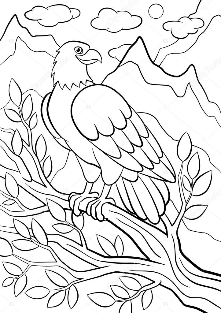 Bird Feather Coloring Page Clipart (#2265610) - PinClipart | 1023x723