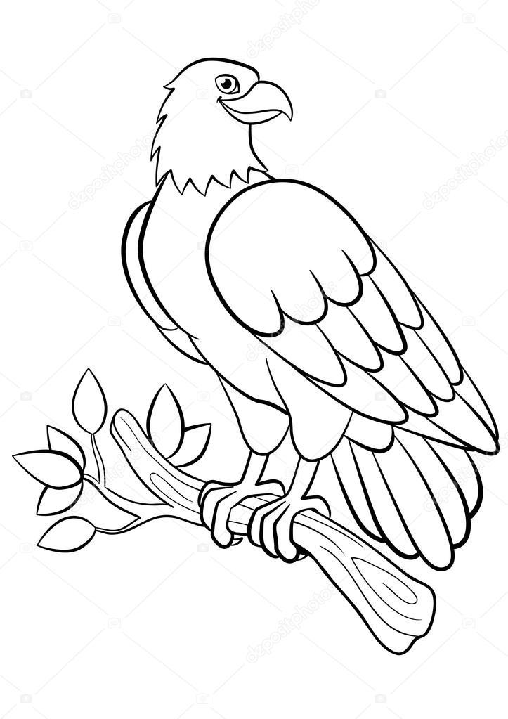 Dibujos para colorear. Aves silvestres. Águila sonriente Linda ...