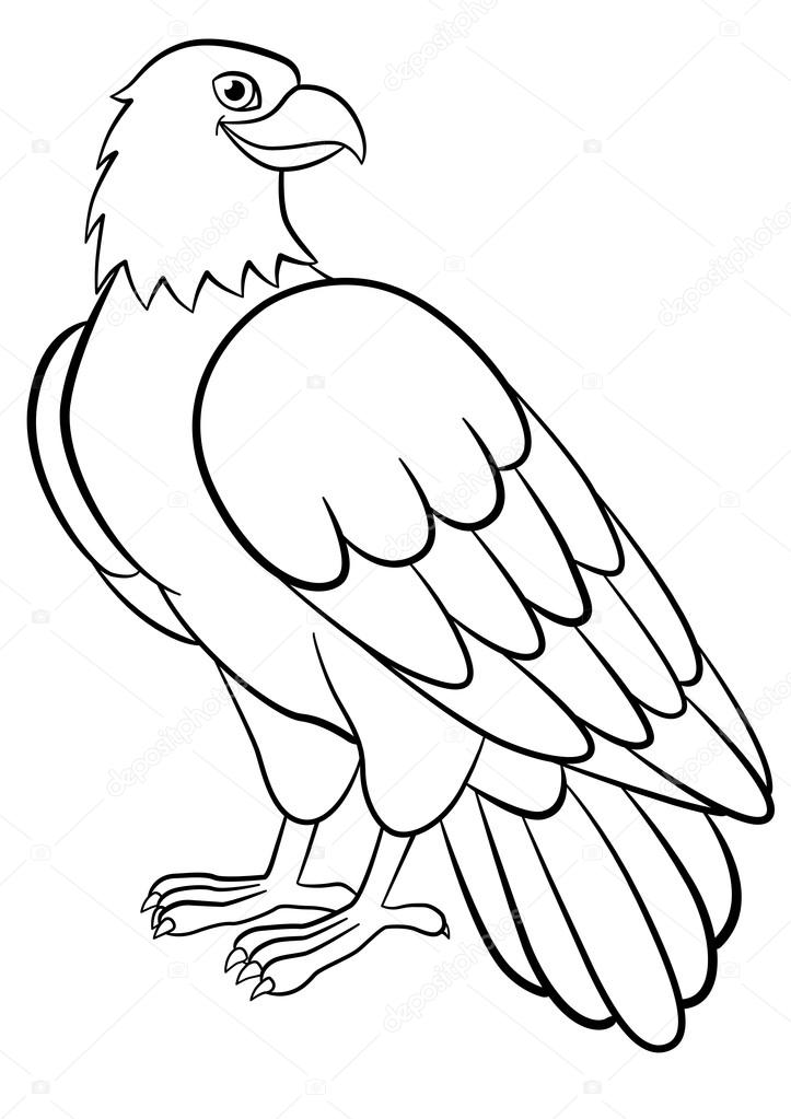 Coloring pages. Wild birds. Cute eagle smiles. — Stock Vector © ya ...