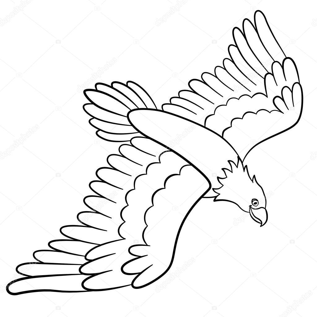 Dibujos para colorear. Aves silvestres. Linda sonrisa de águila ...
