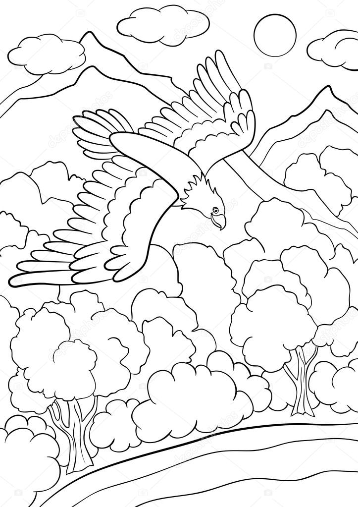 Coloring Pages Wild Birds Cute Eagle Flying Under The Forest