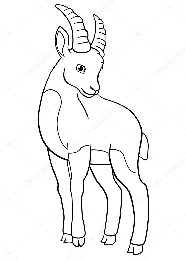 Coloring Pages Little Cute Ibex Stock Vector C Ya Mayka 115473728