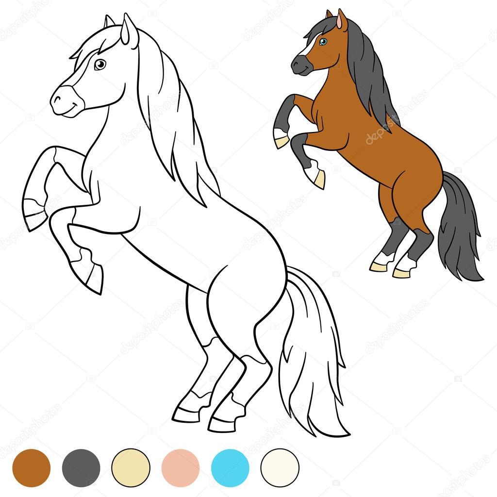 Página para colorear. Color me: caballo. Hermoso caballo — Vector de ...
