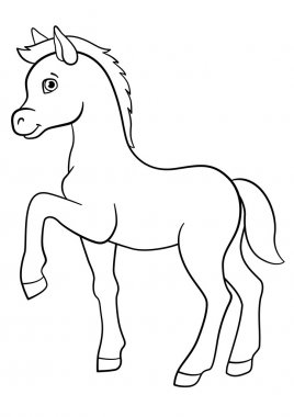 Coloring pages. Farm animals. Little cute foal.