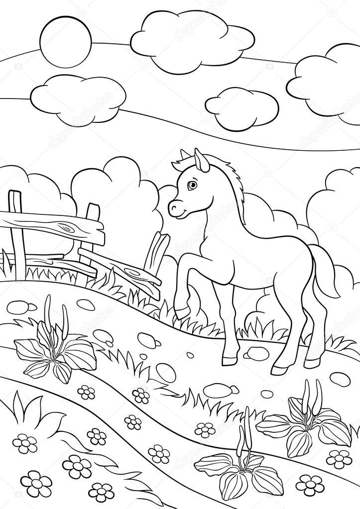 Dibujos para colorear. Animales de granja. Potro lindo poco ...
