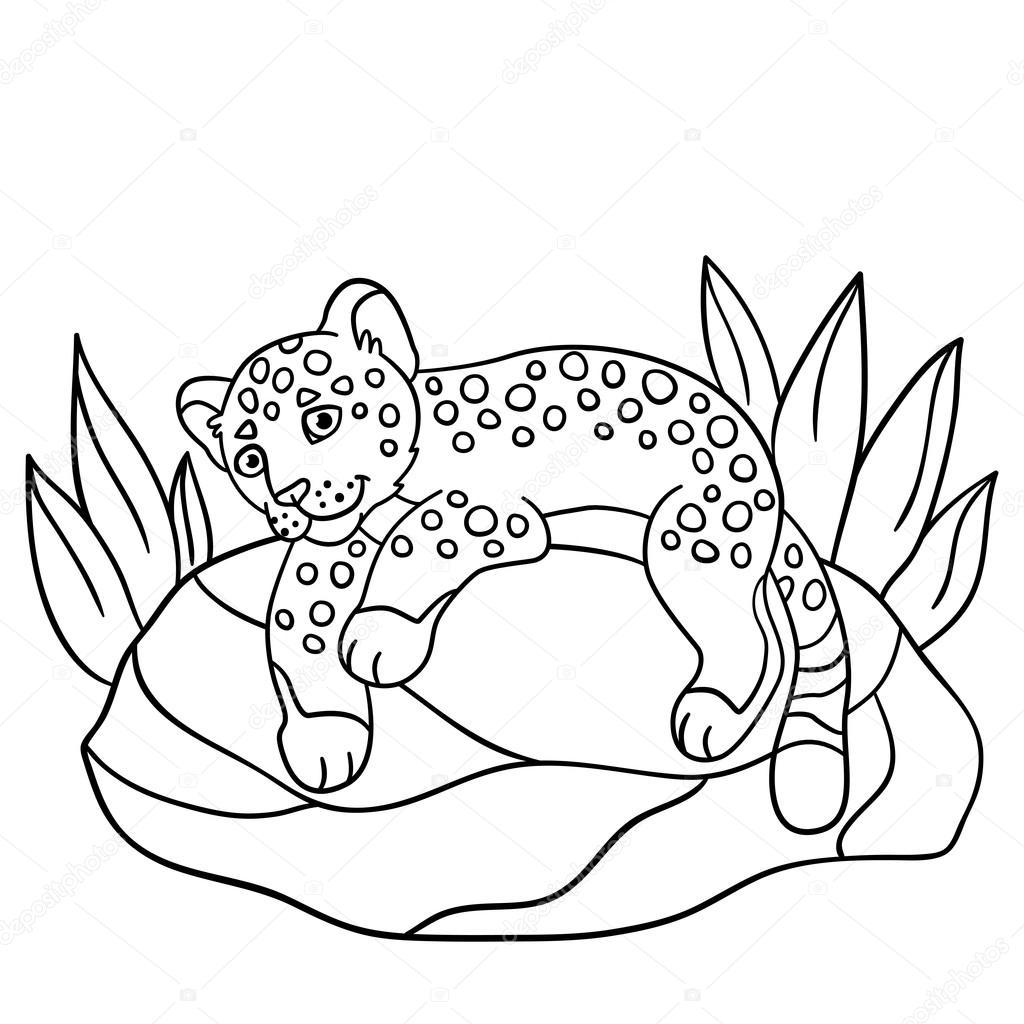 Boyama Sayfaları Küçük şirin Bebek Jaguar Taş Stok Vektör Ya