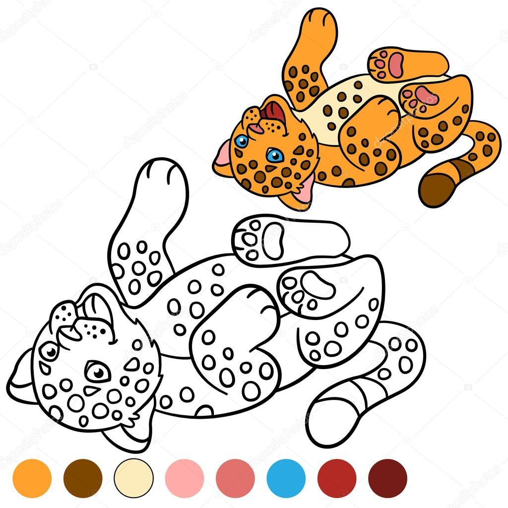 Kleurplaat Met Kleuren Kleine Schattige Baby Jaguar Stockvector