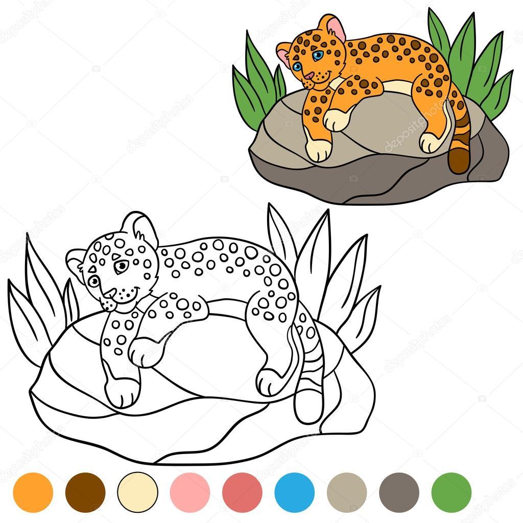 Página Para Colorear Con Colores Jaguar De Lindo Bebé Poco