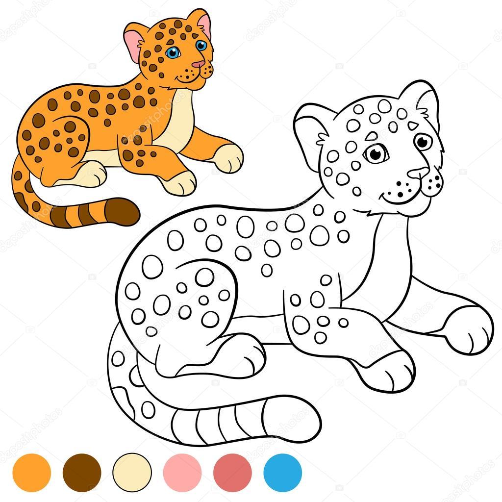 Malvorlagen mit Farben. Kleine niedliche Baby jaguar — Stockvektor ...