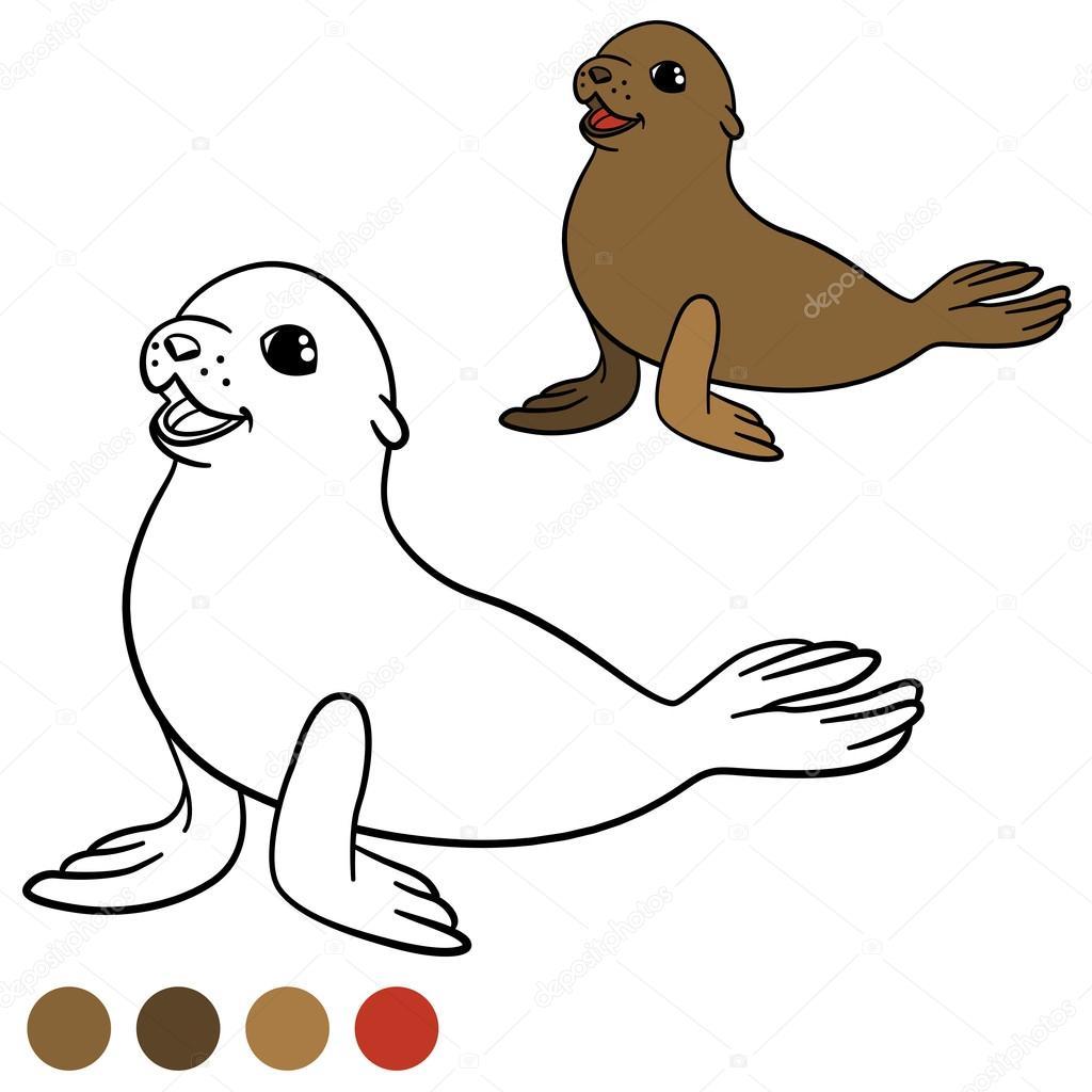 Página para colorear con colores. Marrón poco lindo bebé foca ...