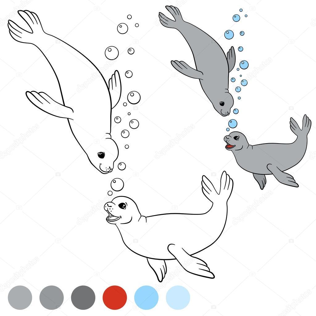 Página para colorear con colores. Dos sellos lindos poco — Vector de ...