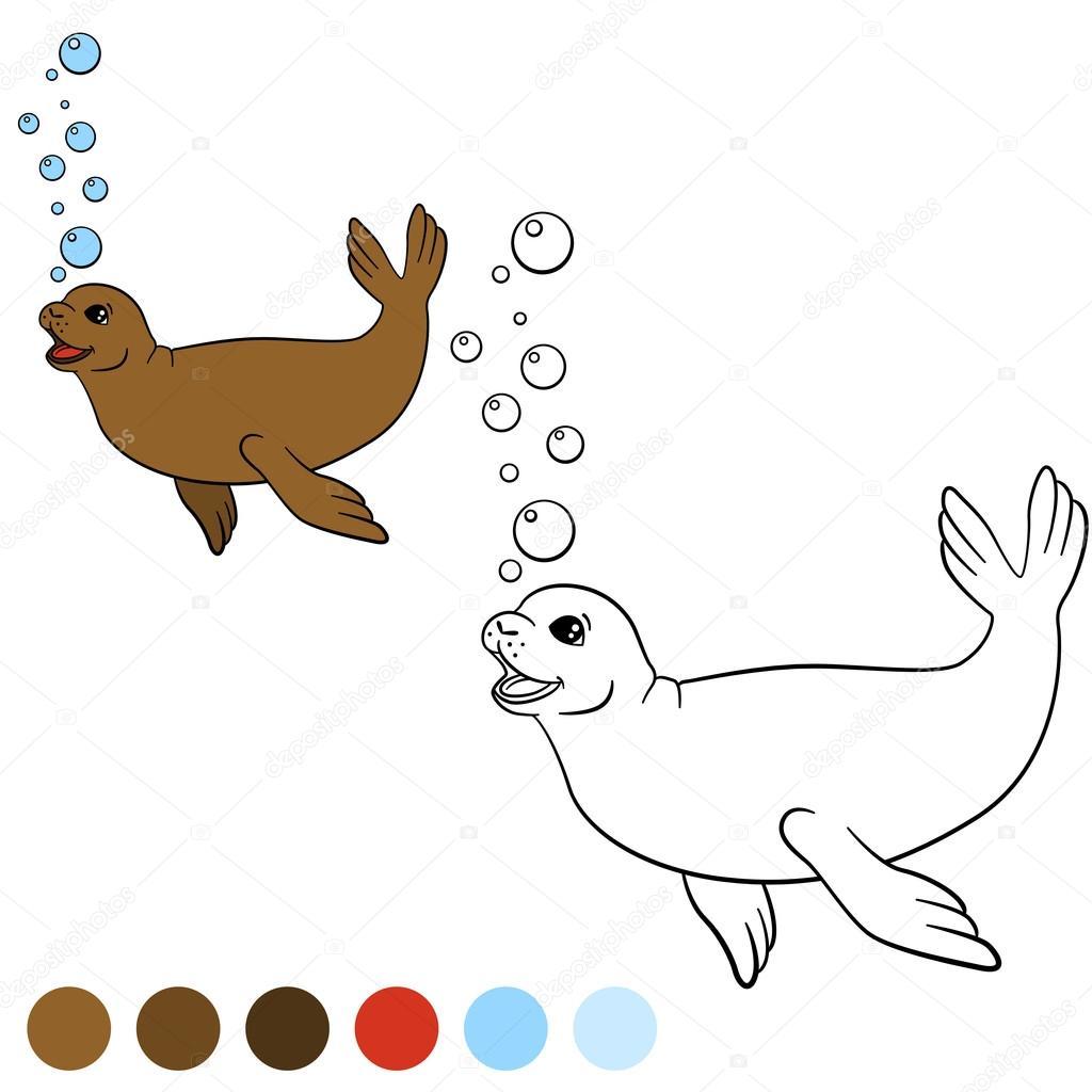 Malvorlagen mit Farben. Kleine niedliche braune Siegel schwimmt ...